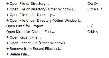 drew-emacs-icicle-File-menu